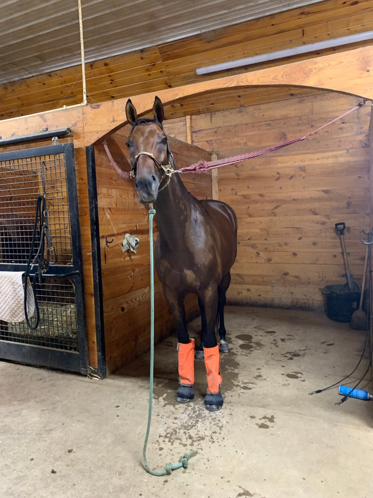 Nay Nay standing in cross ties in orange fly boots