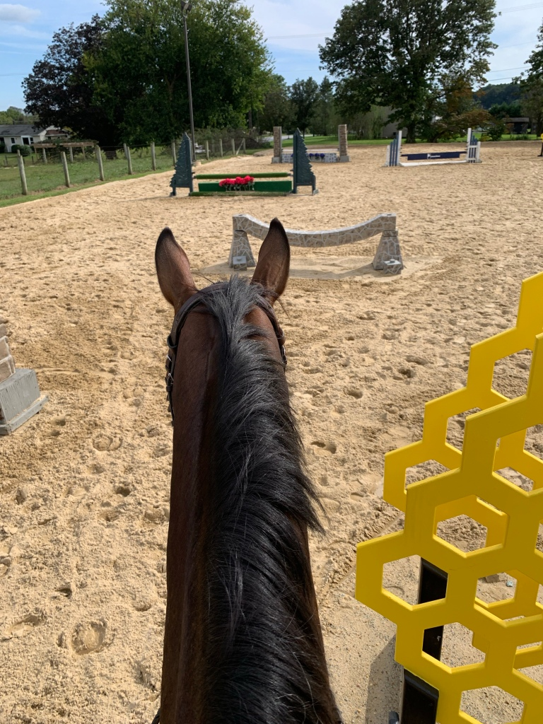 Nay Nay looking at an arena full of jumps